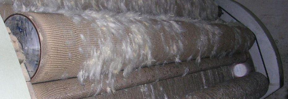 bikaner wool1